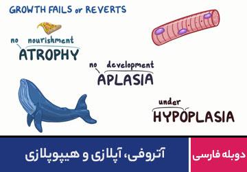 آتروفی ، آپلازی و هیپوپلازی