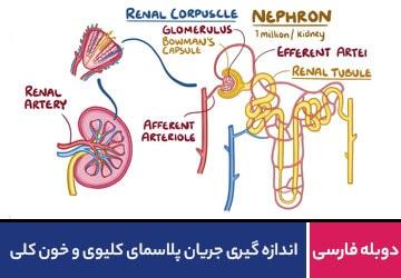 اندازه گیری جریان پلاسمای کلیوی و خون کلی