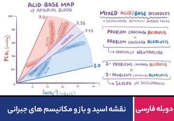 نقشه اسید و باز و مکانیسم های جبرانی