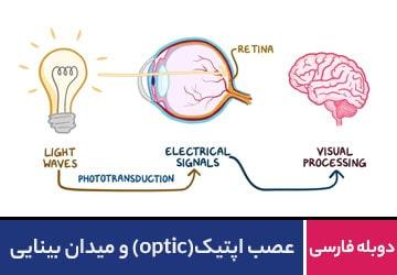 عصب اپتیک ( optic ) و میدان بینایی
