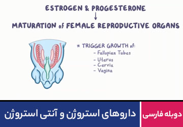 دارو های استروژن و آنتی استروژن