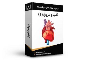 پکیج فیلم های آموزشی دوبله شده رشته قلب و عروق